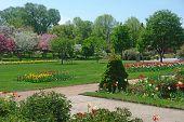 Minneapolis Nature Garden