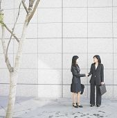 Businesswomen shaking hands