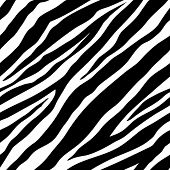Vector illustration of seamless zebra pattern