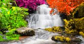 Exotic Waterfall And Lake Landscape Panoramic Beautiful Waterfall In Rainforest At Mundang Waterfall poster