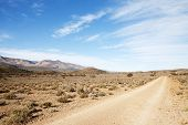 picture of semi-arid  - Dirt road in dry semi - JPG