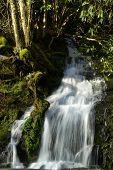 A seasonal waterfall