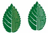 Green leaf with computer and motherboard elements