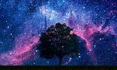 A tree in a field with space background