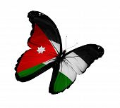 Jordanian Flag Butterfly Flying, Isolated On White Background