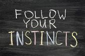 picture of intuition  - follow your instincts phrase handwritten on blackboard - JPG