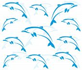 stock photo of porpoise  - Wallpaper images of dolphins  - JPG