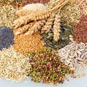 stock photo of legume  - Variety of edible seeds with ripe golden ears of wheat including whole and dehusked sunflower sesame poppy linseed pulses and legumes - JPG