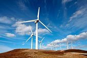 picture of wind-turbine  - wind turbines farm - JPG