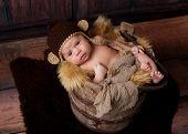 Alert Newborn Baby Boy Wearing A Monkey Hat