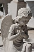 stock photo of cherub  - Praying angel marble funerary statue - JPG