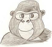 Friendly Monkey