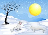 Illustration of the sea lions playing with the snow under the fullmoon