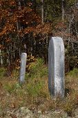foto of headstones  - Two old headstones stand in a North Carolina forest clearing during the changing colors of autumn - JPG