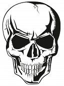 stock photo of rogue  - evil human black skull for halloween - JPG