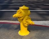 Fire hydrant yellow on downtown Los Angeles California