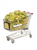Shopping cart with bananas isolated towards white background