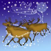 Deers Of Santa