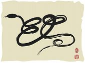 image of chinese new year 2013  - the background of Chinese Snake Calligraphy for Chinese lunar new year - JPG