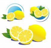 lemons on a white background