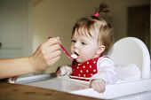 stock photo of homogeneous  - Young Baby Girl eating in the kitchen - JPG
