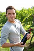 Young winegrower presenting wine bottles