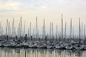 The port of Minimes, La Rochelle, Charente Maritime (France)