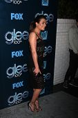 LOS ANGELES - MAR 18:  Lea Michele at the GLEE 100th Episode Party at Chateau Marmont on March 18, 2