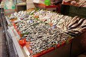 Street fish market in Istanbul, Turkey