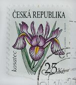 Czech Republic Post Stamp Printed In Czech Republic Shows Iris Flower Painting