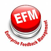 3D Illustration Of Efm Enterprise Feedback Management Button