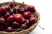 Red cherries with phloem basket