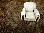 pic of tall grass  - Old worn chair sitting abandoned in tall grass and weeds - JPG