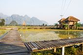 Resort Vang Vieng, Laos, areas of green rice fields and mountains