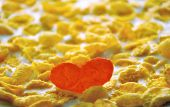 Heart From Flakes