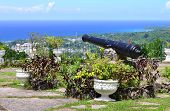 The scenic view over Ocho Rios port town from Shaw Park Botanical Gardens