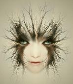Face like a lynx