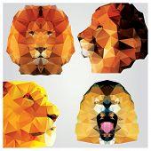Collection of 4 geometric polygon lions, pattern design, vector illustration