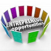 picture of self-employment  - Entrepreneur Opportunities Doors New Business Ownership Ideas - JPG