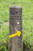 stock photo of basque country  - Way of Saint James signpost in the Basque country - JPG