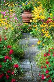 A beautiful path surrounded by flowers