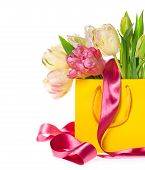 Gift Bag With Fresh Spring Tulip Flowers