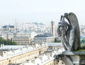 Demon Gargoyle From Notre Dame De Paris