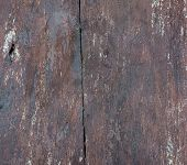 Grunge rough detailed wooden background of vintage table