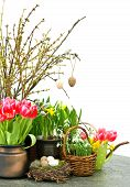 Spring Flowers With Easter Eggs Decoration