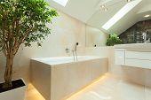 Illuminated Bathtube In Modern Bathroom
