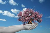 Concept or conceptual human man or woman hand holding a pink spring tree and blue sky with clouds ec
