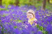 Cute Toddler Girl In Bluebell Flowers In Spring