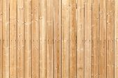 stock photo of uncolored  - Uncolored wooden wall with nails - JPG