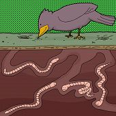 Earthworms And Bird